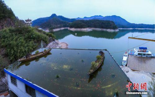浙江现屋顶养鱼引围观 还有两艘木制的小船(图)